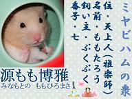 Miyabi_momotarou