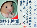 Miyabi_momotarou_2